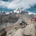Climbing Mount Sinai – A Spiritual Awakening