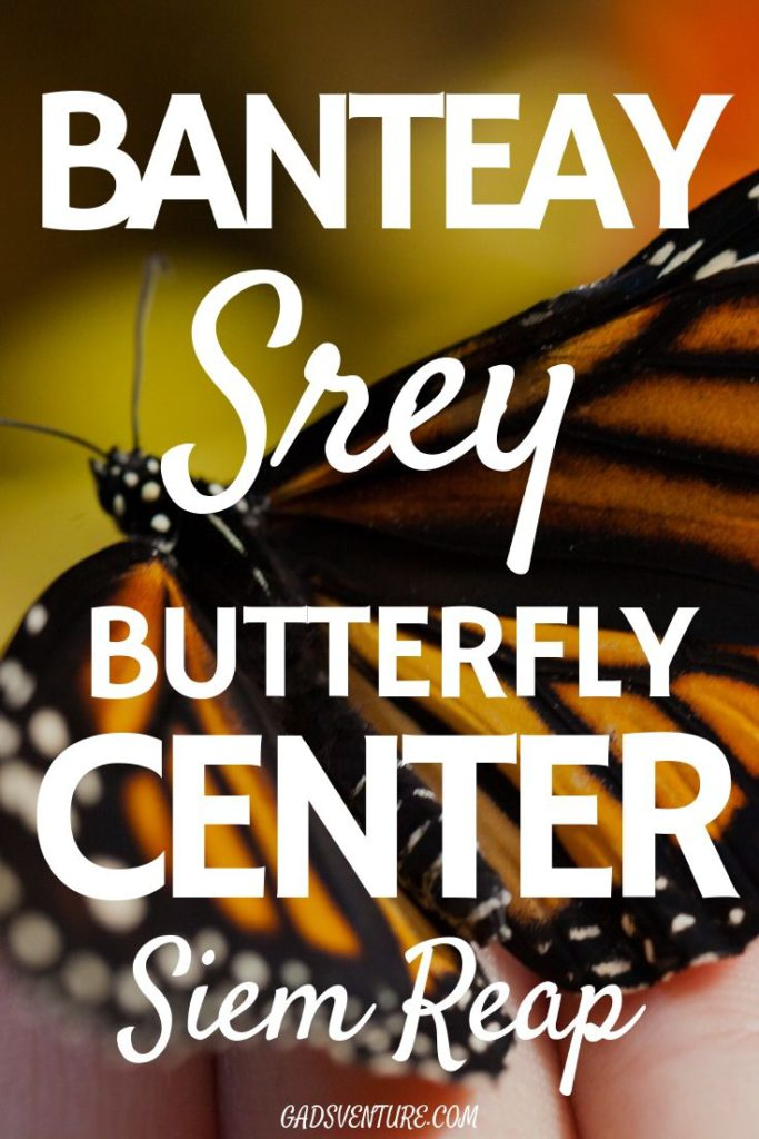 Banteay Srey Butterfly Center