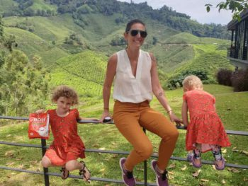 Things to do at Cameron Highlands