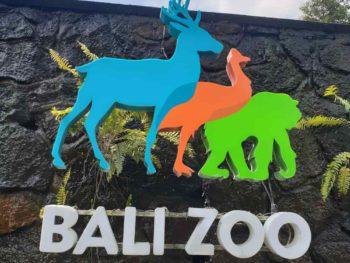 Bali Zoo Breakfast with Orangutans