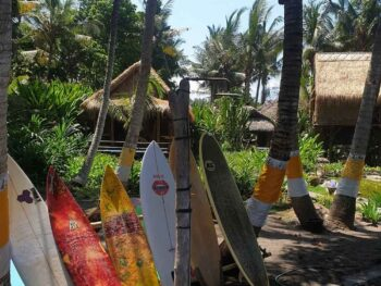 Best Soft Top Surfboards